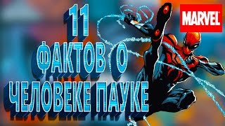 11 ФАКТОВ О ЧЕЛОВЕКЕ-ПАУКЕ || ОРГАНИЧЕСКАЯ ПАУТИНА || MARVEL Comics || [by Killian Trace]