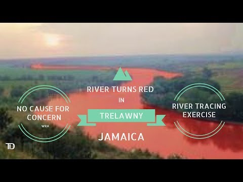 River turns BLOOD RED in Trelawny. Water Resources Authority says no need to be ALARMED