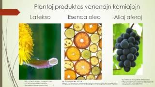 Plantoj: la kemiistoj de naturo (Esperanto)