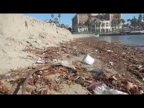 Video #2: Pico-Kenter Storm Drain, Saturday, Jan. 14, 2017