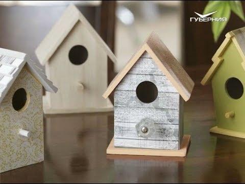 Как привлечь полезных птиц в сад