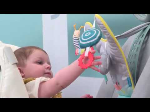 Taf Toys Easier Parenting - Koala In Car Play Center