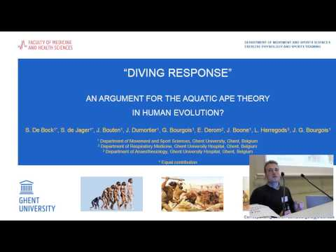 Sander De Bock - Diving response: an argument for the Aquatic Ape Theory in human evolution?