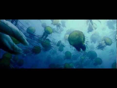OCEANS   Film Trailer   Participant Media