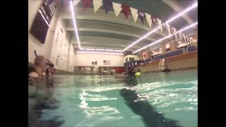 SUNY Maritime College: Maritime Divers Association Pool Certification Dives