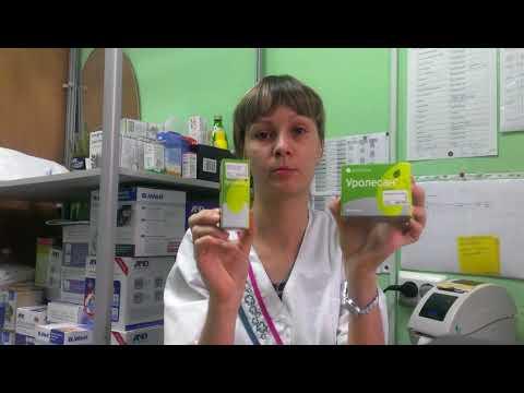 Лечение мочекаменной болезни: когда необходимы антибиотики