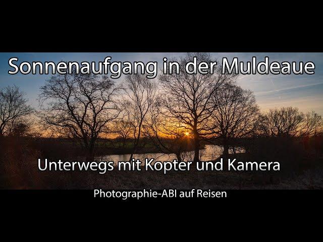 Morgens in der Muldeaue - Unterwegs zwischen Goitzsche und Mulde - Sony Alpha 6000/6300/6500 - Mavic