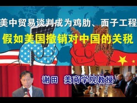 宝胜要文:谢田教授:美中贸易谈判成为鸡肋、近乎面子工程;假如美国撤销对中国的关税
