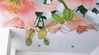 видео Натяжные плёночные потолки