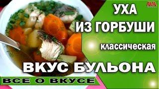 🍲 Рецепт ухи классической из горбуши / Просто объедение #ValeryAliakseyeu