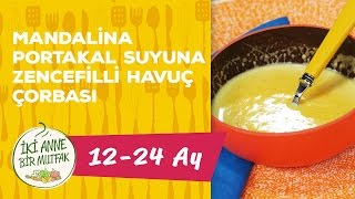 12 - 24 Aylık Bebekler İçin Mandalina/Portakal Suyuna Zencefilli Havuç Çorbası Tarifi