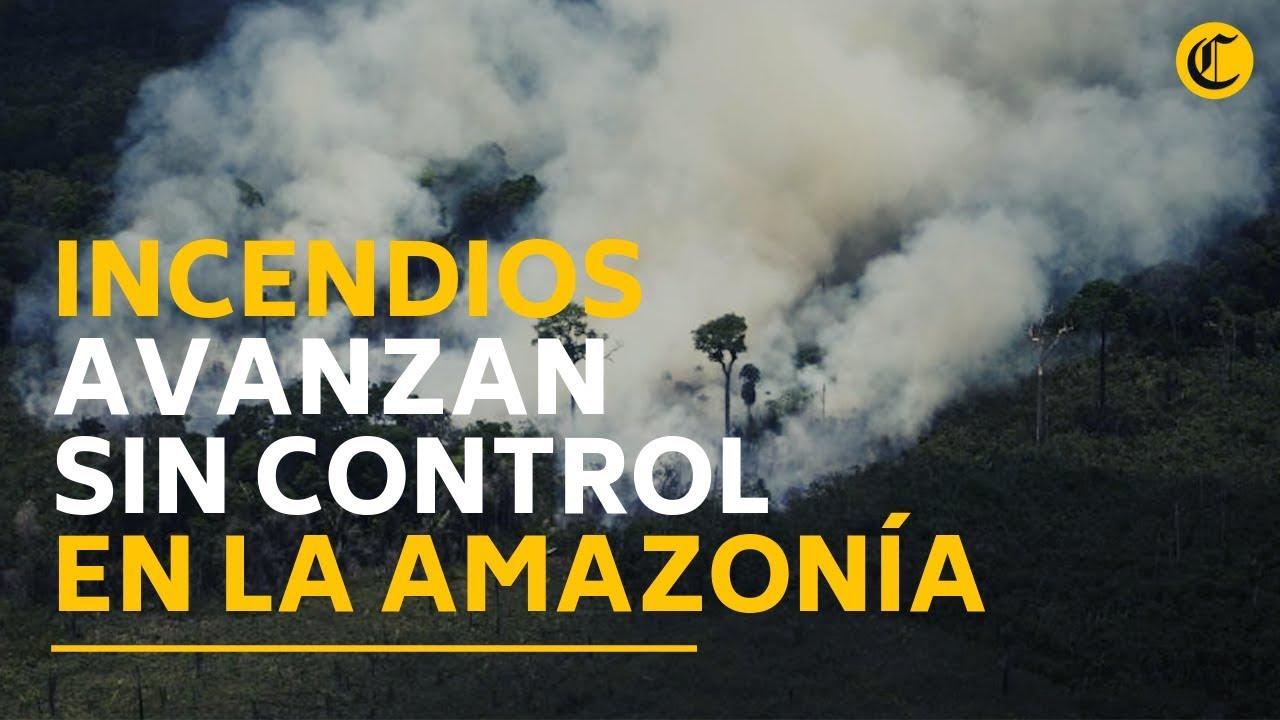 Arde La Amazonía Incendios Forestales Avanzan Sin Control