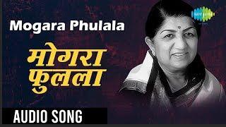 mogara phulala | Audio Song | Lata Mangeshkar