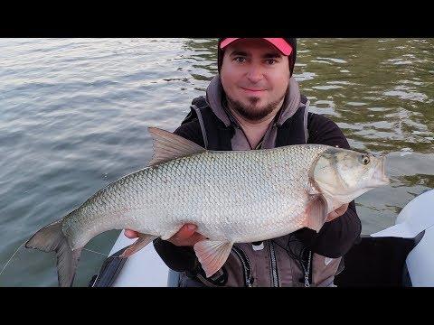 Рыбалка без егеря лучше! Наконец-то астраханский клев!
