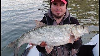 Рыбалка без егеря лучше Наконец то астраханский клев