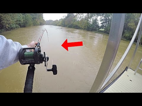 Post Hurricane CREEK MADNESS - Catching One BIG Catfish After Another