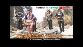 Chalan Del Norte - Amiga Mia  // José Silva - Huayno con Requinto Peruano