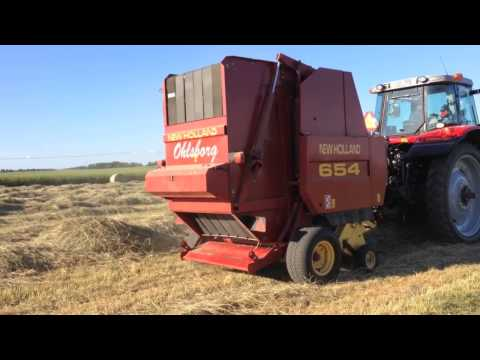 New Holland 654 Round Baling Hay ( Massey Ferguson 7490 )