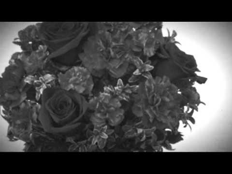 flowers & florists in Fairport, Fredonia, Fulton, Fishkill and Farmingdale  NY