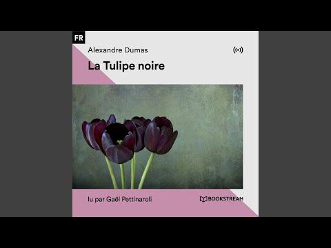 Chapitre 24: Où La Tulipe Noire Change De Maître (Partie 2)