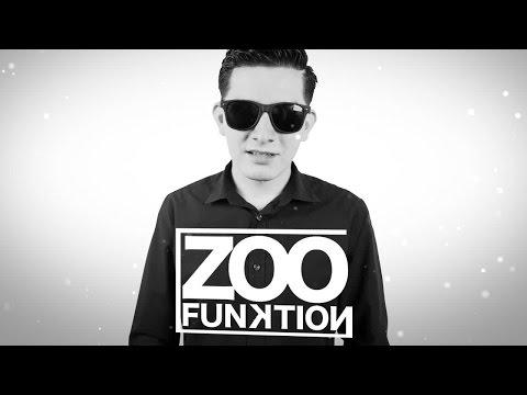 Zoo Funktion - Electro House Mix - Panda Mix Show