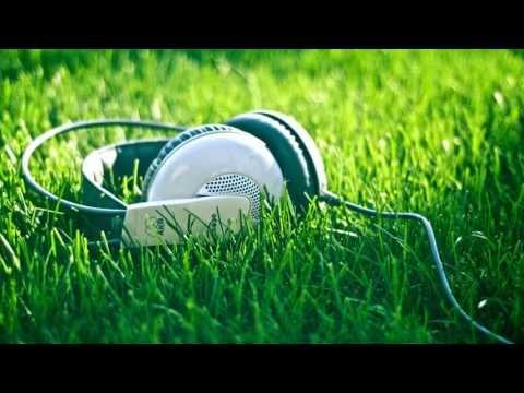 Skanek - The Bizz Electro v 2.0 (Radio Mix)