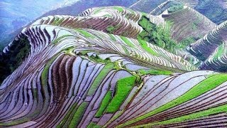 Incredible India - Spectacular hill top rice fields- mavinakere Temple