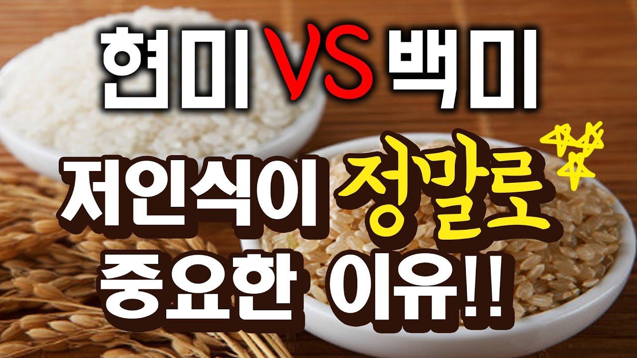 백미 vs 현미식단의 정확한 정보, 혈관보호, 골다공증 방지 식단, 잡곡밥의 문제