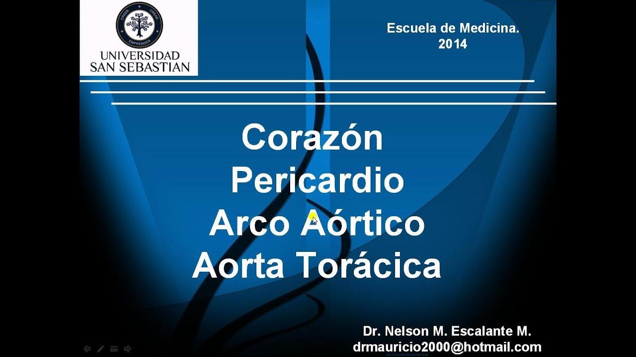 Anatomía del Corazón y Pericardio. Dr. Nelson M. Escalante. USS ...