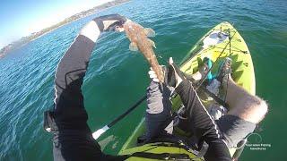 TFA 30 Kayak Fishing Mersey Bluff Devonport Tasmania