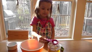 Becky's Mindful Kitchen Presents: Vivi's Gluten Free Graham Crackers