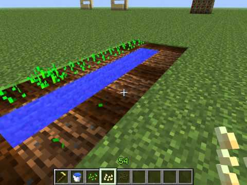 Как выращивать овощи в Minecraft