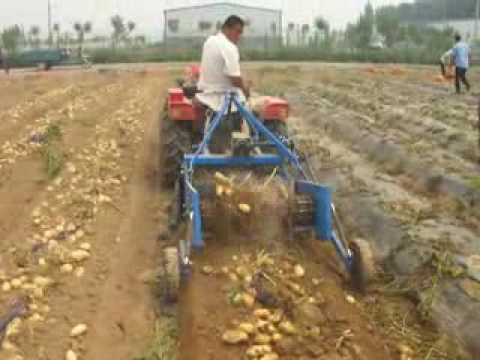Single Row Potato Harvester Harvesting Machine For Sale 0086