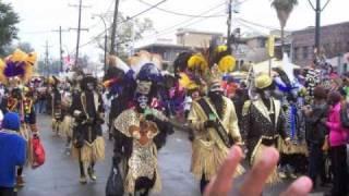 Reggae Dub Mardi Gras