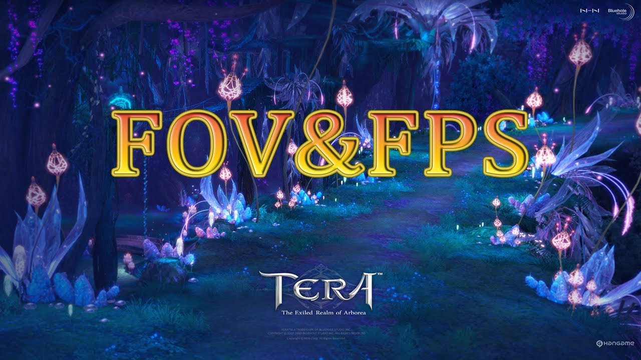[TIP]FOVและการปรับเพิ่มค่าFPS