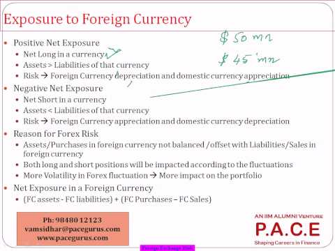 FRM Part 1 Training for Foreign Exchange Risk