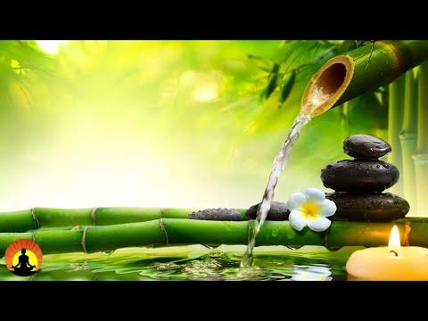 🔴 Relaxing  247 Meditation  Healing  Spa  Zen Sleep Yoga Study