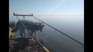 Первая летняя рыбалка 2020. Фидер на озере Уелги 02.05.2020