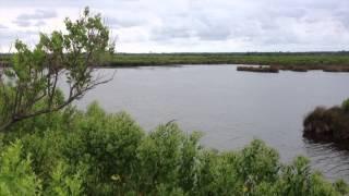 Audenge Camping Le Braou - Bassin d'Arcachon