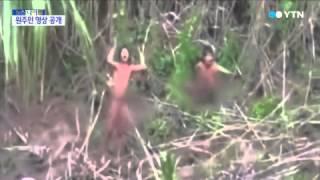 외부와 차단된 아마존 원주민 부족 영상 공개 / YTN
