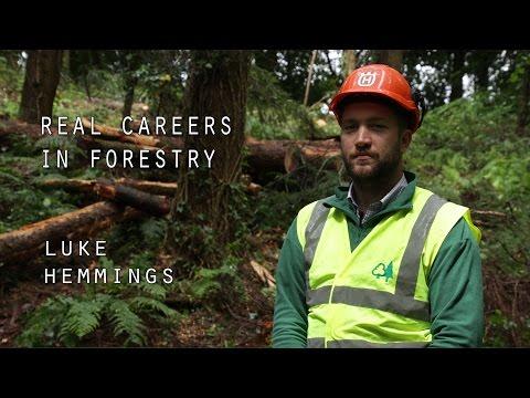 Real Careers in Forestry - Luke Hemmings