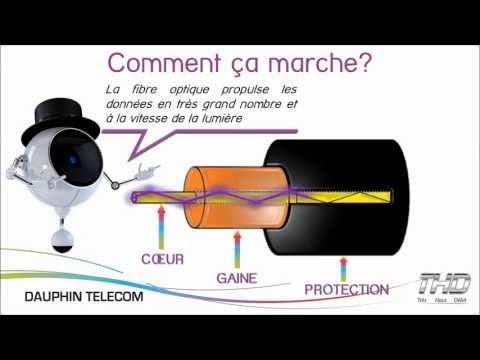La fibre optique par Dauphin Telecom - www.dtfibre.fr - synthèse