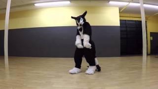 Sergal Freestyle Fursuit Dance Atomic Dog (george Clinton)
