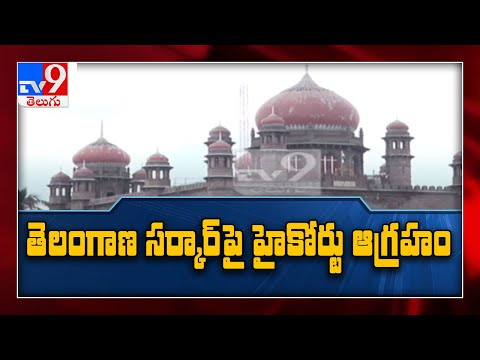 TS High Court pulls up state govt for low COVID-19 RT-PCR tests – TV9