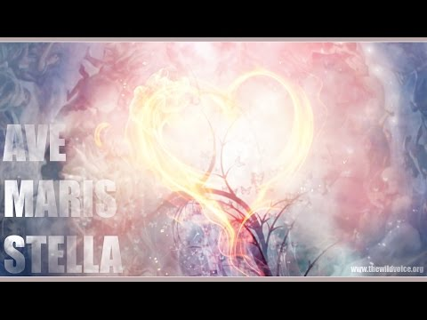 Ave Maris Stella ~ THE WILD VOICE | HD