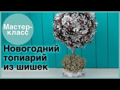 Новогодний топиарий из шишек. Мастер-классы на Подарки.ру