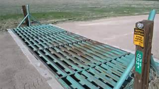 Reasons To Invest In Concrete Cattle Guards