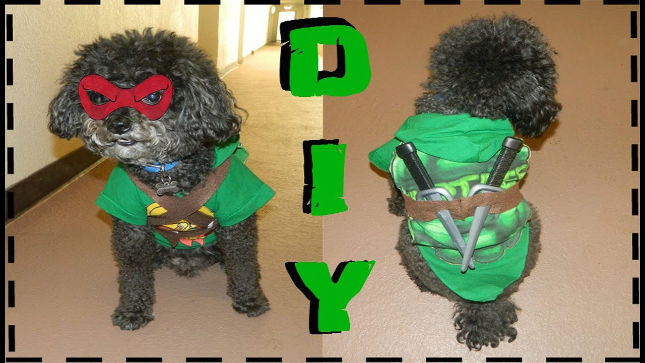 & DIY Teenage Mutant Ninja Turtle Dog Costume (No Sew) - YouTube