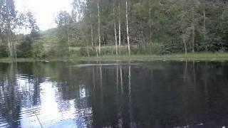 Gädd fiske Pik