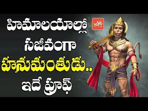 హిమాలయాల్లో సజీవంగా హనుమంతుడు... ఇదే ప్రూఫ్! OMG! Lord Hanuman Is Alive! Proof Going Viral | YOYO TV